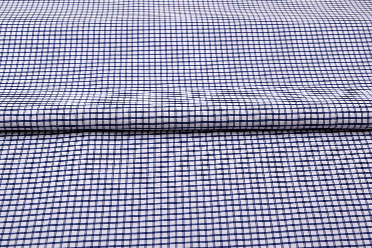 Deep Blue Graph Checks Shirt 120082 (2)