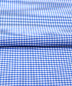 Blue Mini Checks Shirt 120117 (1)