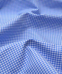 Blue Mini Checks Shirt 120117 (3)
