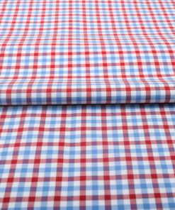 Red and Blue Gingham Shirt 121191 (2)